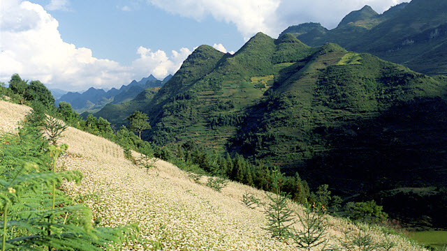 Bac Ha mountain scenery