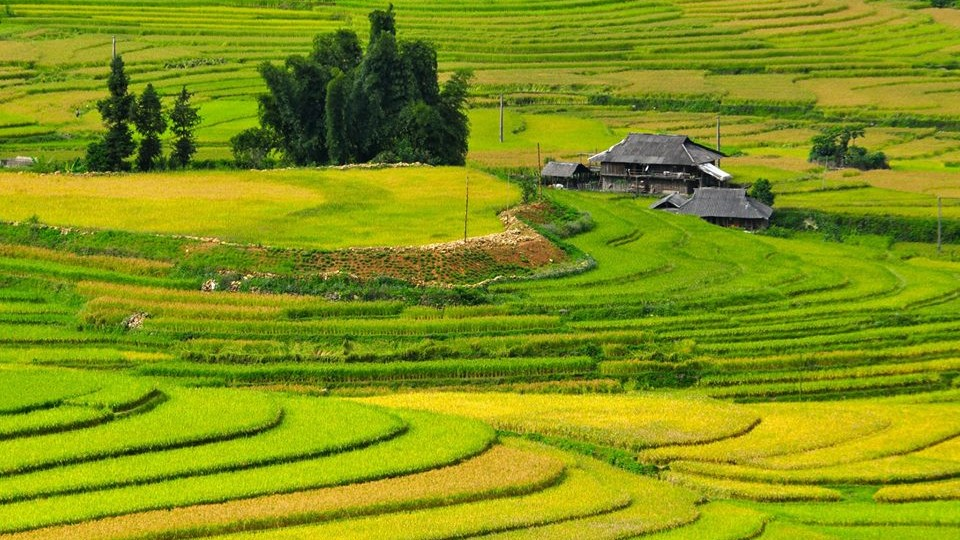Scenery of Don village in Pu Luong - MaiChau Vietnam