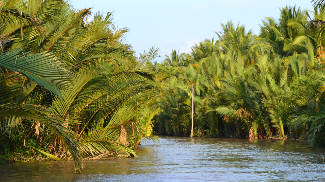 Mekong delta tours BenTre - river cruise in small waterway