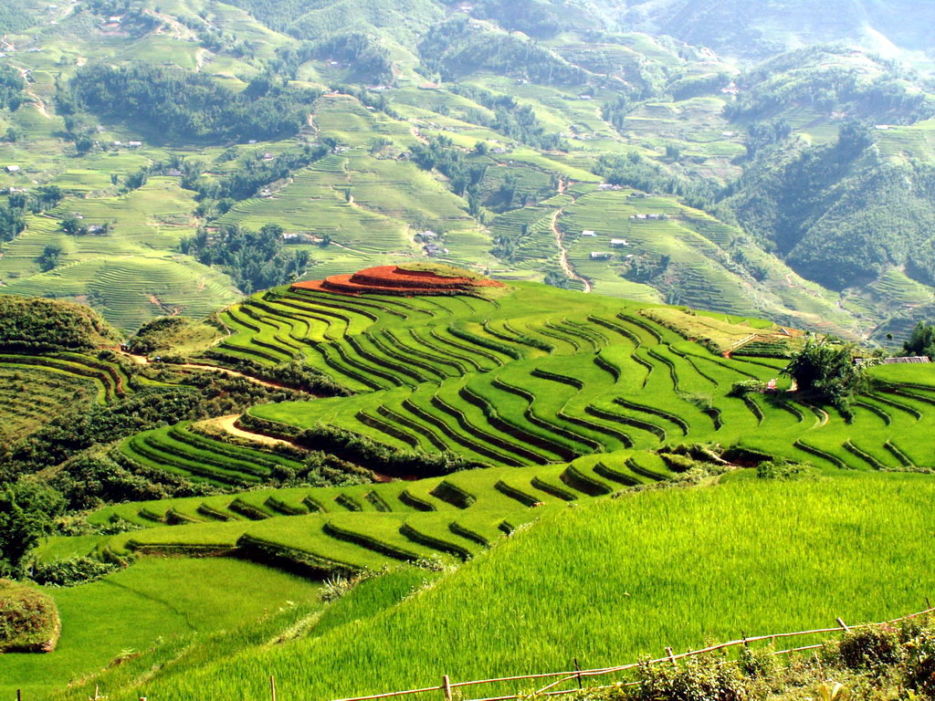 Scenery of Muong Hoa valley during the trek from Sapa to TaVan and Ban ho - Sapa tours