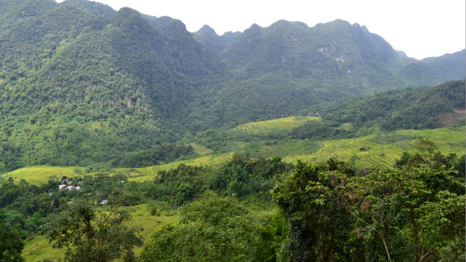 Mai Chau trek to PuLuong nature reserve