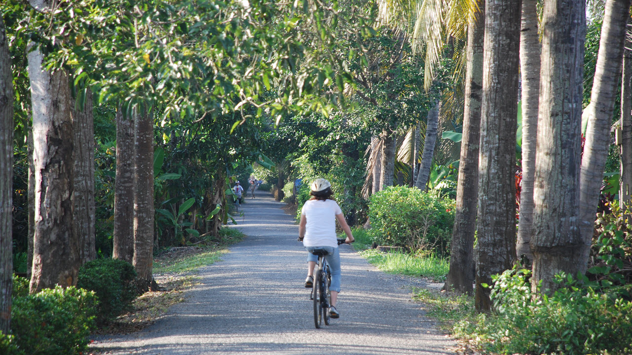 Country road along the river - Mekong delta cycling tour 4 days