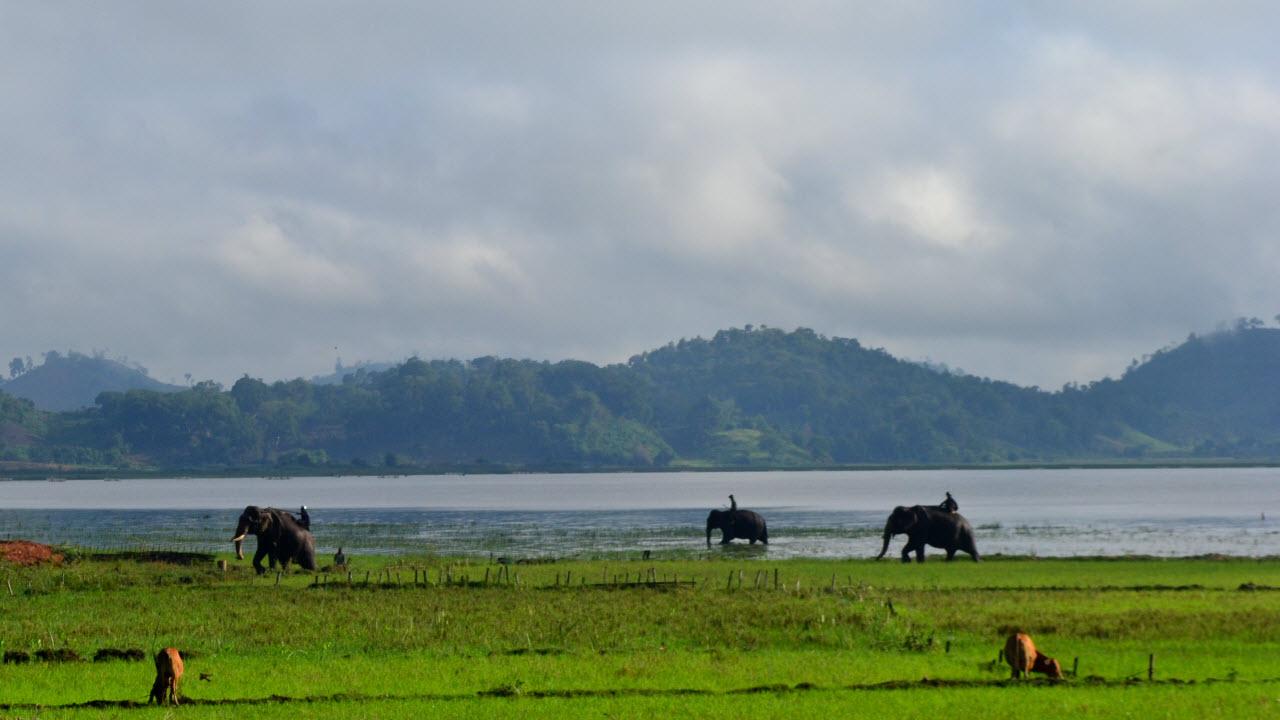 Central Highlands Vietnam - Lak lake