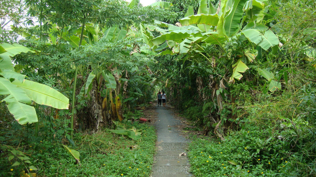 Mekong delta tours CanTho - walk along natural waterways
