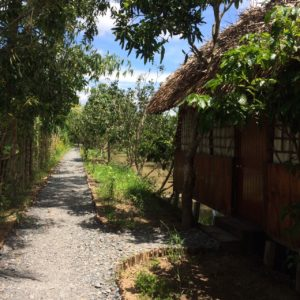 Mekong delta cycling tour 2 days - ecohomestay in CanTho