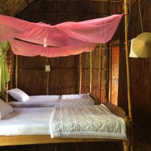 Twin room guesthouse in CanTho - Mekong delta tour 2 days